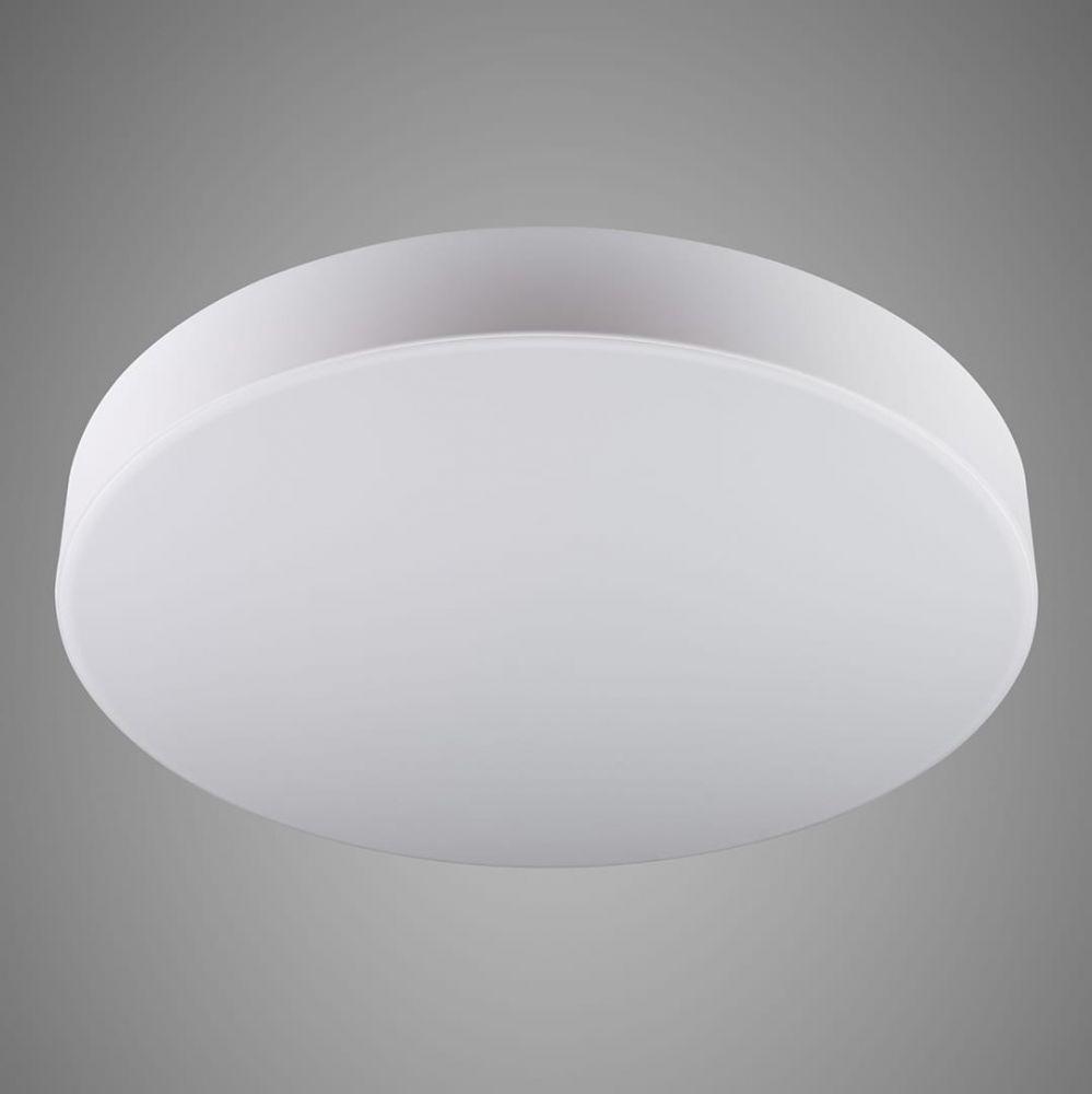 HONEY light 000352